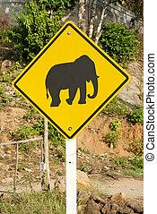 交差, タイ, 印, 道, 象