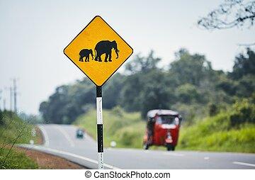 交差, 警告, 象, 印
