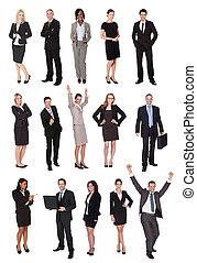 人々, マネージャー, ビジネスエグゼクティブ