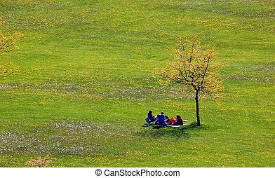 人々, 木, 孤独