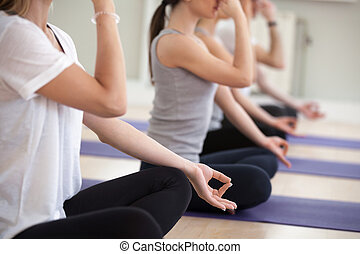 人々, 練習する, グループ, 鼻孔, yogi, 交替しなさい, clo, 呼吸
