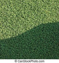 人工, 草, 假貨, 草皮, 合成, 草坪, 領域, 宏, 人物面部影像逼真