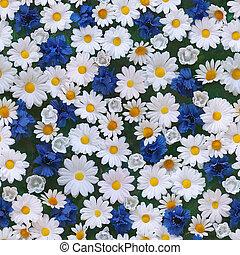 人工, cornflower, そして, カモミール, seamless, 背景