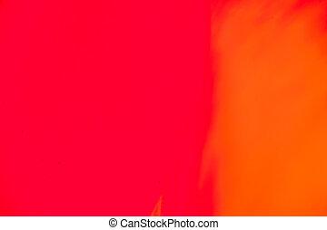 人物面部影像逼真, ......的, the, 花瓣, ......的, the, 紅色橙色, 郁金香, 花