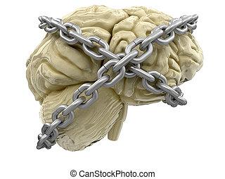 人間の頭脳, そして, 錠