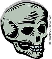 人間の頭骨