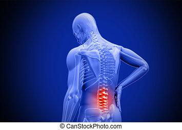 人間, より低い, 痛み, 摩擦, デジタル, ハイライトした, 青, 背中, 赤