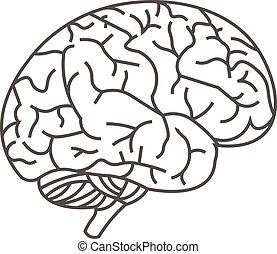 人間, イメージ, ライン, 脳, ベクトル, 黒い背景, 白
