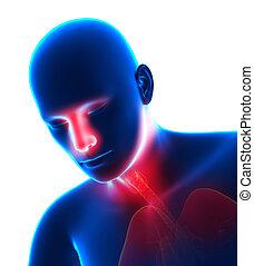 人, ∥で∥, インフルエンザ, -, 寒い, 中に, ヘッド, -, くしゃみをする, 隔離された, 白