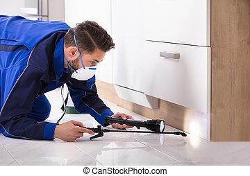 人, スプレーをかける, 殺虫剤, 中に, 台所