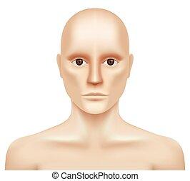人, 毛のない, 見る, 白, カメラ。, 裸である