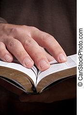 人, 藏品, 聖經