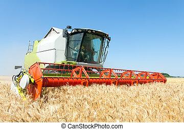 仕事, コンバイン収穫人, フィールド, 小麦