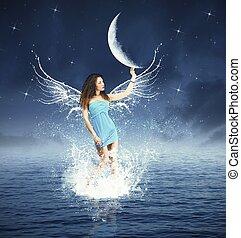 仙女, 時裝, 夜晚