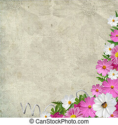 休日, 背景, ∥で∥, 植物