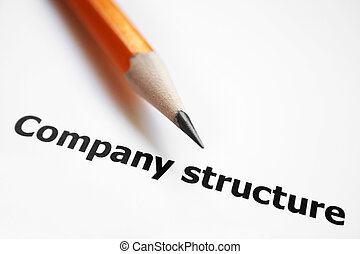 会社, 構造