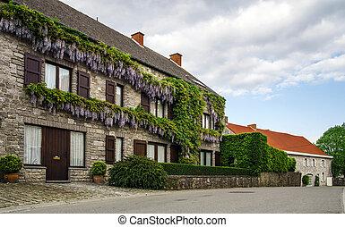伝統的である, ベルギー, 通り, 光景, 村