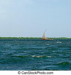 伝統的である, ボート, 帆, 中に, lamu, kenya