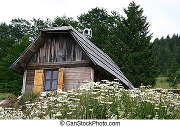 伝統的である, 家, 古い