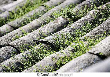 伝統的である, 家, 韓国南, 屋根