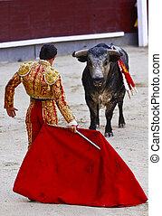 伝統的である, -, corrida, スペイン, bullfighting