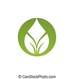 低下, ベクトル, 葉, 水, テンプレート, ロゴ