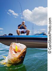 体育运动钓鱼