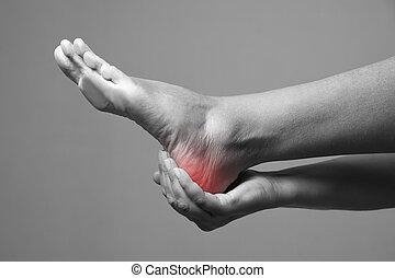 体, 灰色, 痛み, 人間, 女性, 背景, feet., マッサージ, foot.