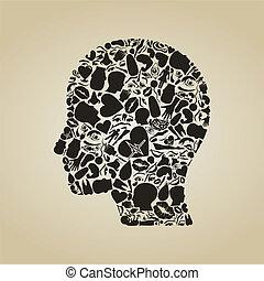 体, 頭, 部分