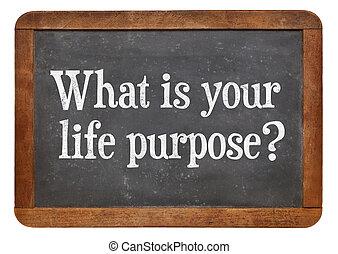 何か, あなたの, 生活, main, 目的