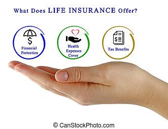 何か, する, 生命保険, offer?