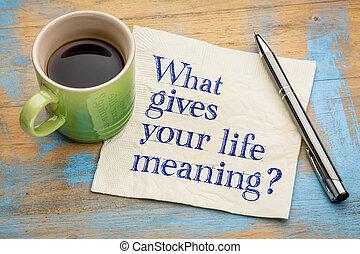 何か, 質問, 生活, 意味, あなたの, 与える