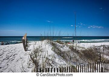 佛羅里達, 海灘, 場景, destin