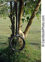 作られた, 木, に, タイヤ, depends, 変動