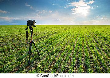 作成, 写真撮影