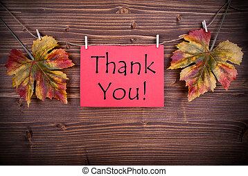 你, 感謝, 紅色, 標簽