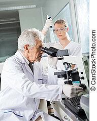 使うこと, 顕微鏡, 科学者, マレ, 実験室