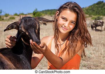 供給, goat