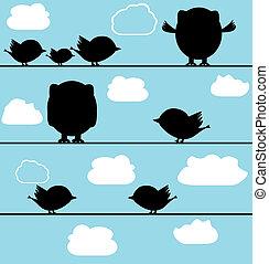 侧面影象, 在中, 鸟, 猫头鹰, 在上, a, 电线, 带, 云