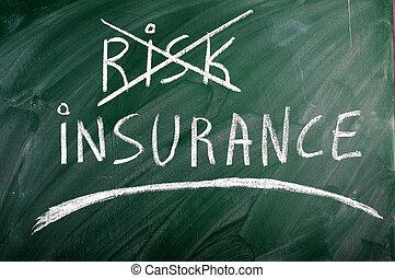 保険, 危険