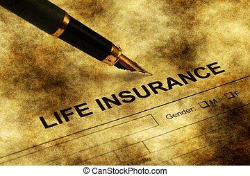 保険, 形態, グランジ, 生活, 概念