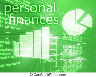 個人的な 財政