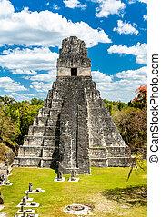 偉人, ジャガー, guatemala, tikal, 寺院