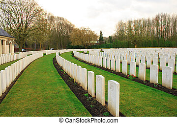 偉人, 墓地, 1(人・つ), 木, フランダース, ベルギー, 世界, 戦争