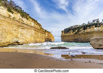 偉大, 澳大利亞, 湖, 海洋, ard, 峽谷, 向前, 路