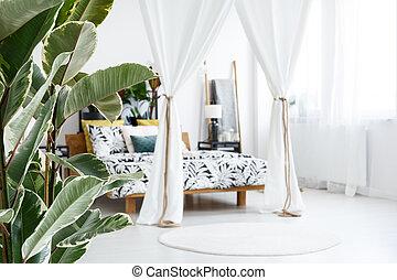 側視圖, ......的, 植物, 以及, 床