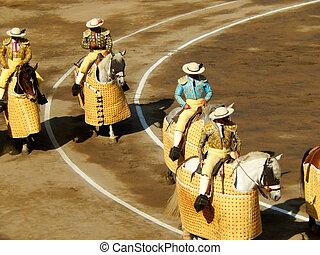 傳統, ring., picadors., bullfighters