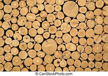 傷口, 報告, 結構, 木材