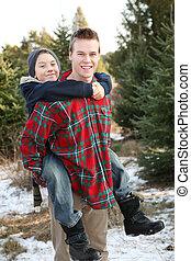 兄弟, 農場, 木, 楽しい時を 過すこと, クリスマス