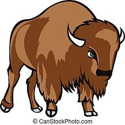 充分, 北美野牛